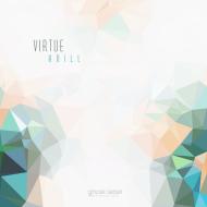 anill virtue